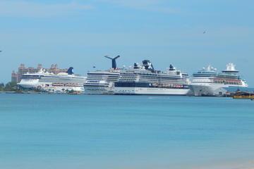 Nassau Shore Excursion: Snorkeling Tour