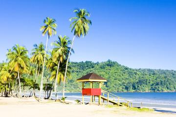 Trinidad Highlights and Scenic Drive...