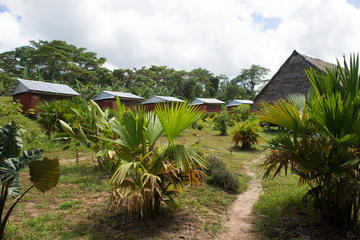 3-Day Maniti Eco-Lodge Amazon Experience from Iqui
