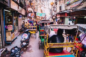 Private Walking Tour of Old Delhi...