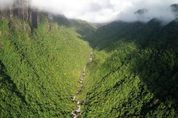 Daintree Rainforest and Great Barrier Reef Scenic Helicopter Flight from Cairns