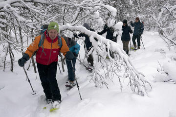 2-Hour Guided Snowshoe Walk on Tromsoya Island in Tromso