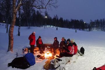 Tromso Winter Adventures - Tobogganing, Snowshoeing and Winter Games