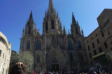 Small Group Outdoors Walking Tour of Sagrada Familia and Gothic...