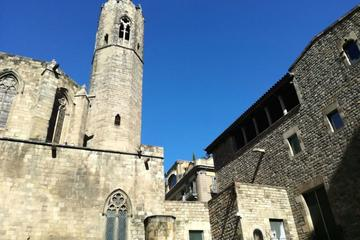 Small Group walking Tour of Gothic District and Picasso Museum