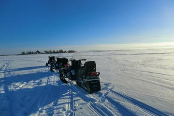 Arctic Circle Snowmobile Tour from...