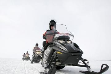 Snowmobile Safari to Reindeer Farm from Ruka including Reindeer Sleigh Ride