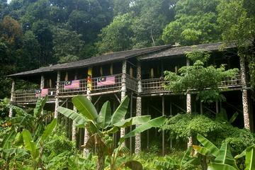 Annah Rais Bidayuh Longhouse Tour from Kuching
