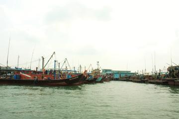 Shore Excursion: Private Pulau Ketam with Selangor