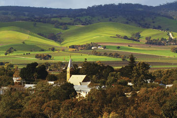 Barossa Valley Hop-On Hop-Off Tour from Adelaide