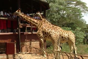 Nairobi National Park,David...
