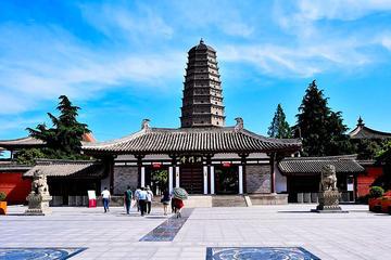 Day Trip from Xian including Qianling Mausoleum and Famen Temple