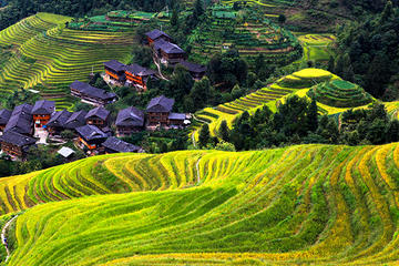 Private Day Tour Visiting Longji Rice Terrace with PingAn Zhuang...