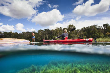 Day Trip Self-Guided Kayak Trip on Rainbow River near Dunnellon, Florida