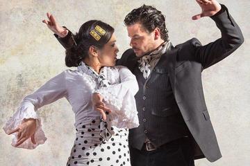 Flamenco Benalmadena Show