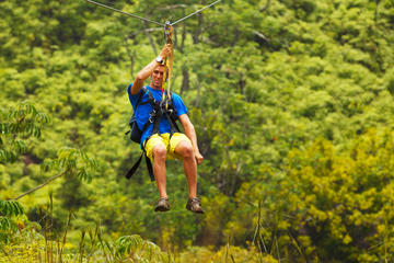 Zipline Adventure and Tropical Zoo