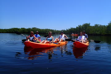 All Day Kayak Rental in Tavernier