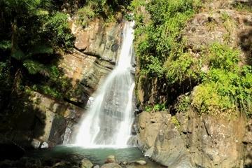 Vandring i El Yunque-regnskogen från San Juan