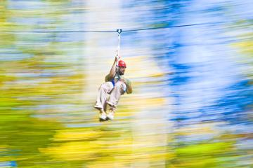 Day Trip Zipline Tour and Aerial Challenge Combo at Nashville West near Kingston Springs, Tennessee