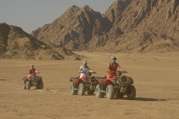 Super Safari 5 In 1quad Camel Ride...