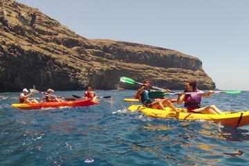 2-hour Kayak Experience in Playa de Vueltas in La Gomera