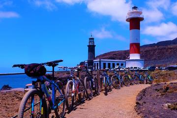 4,5-Hour Tour on Mountain Bike in...