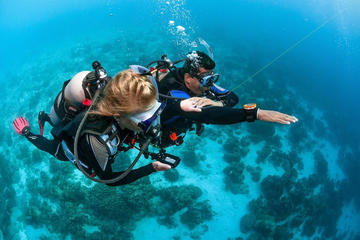 4-day diving course for beginners in ...