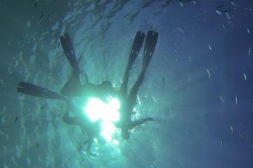 5-hour snorkelling at Sardina del...