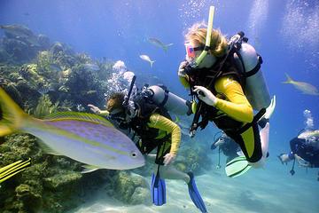 PADI Discover Scuba Diving in Puerto Aventuras
