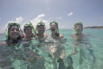 Icacos Snorkel and Beach Package from Fajardo
