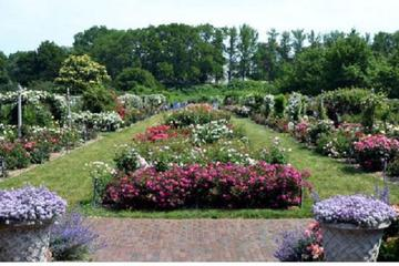 Brooklyn Botanic Garden Admission with 3-Course Dining at Yellow...