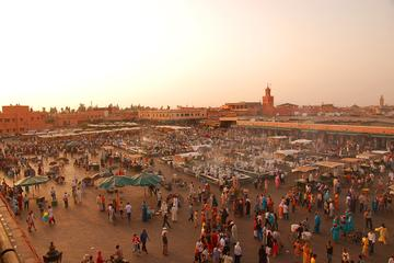 Marrakech Guided Day Tour from Agadir