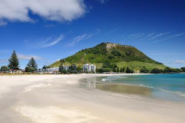 Day Tour to Tauranga Mount Maunganui From Rotorua