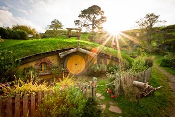 Hobbiton Movie Set and Waitomo...