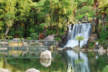 Rotorua Day Tour: Geothermal Geysers and Rainbow Springs Combo...
