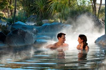 Rotorua Geothermal Geysers and Polynesian Spa Including Lunch Small...