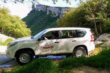 Safari en jeep d'unejournée dans les...