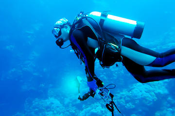 One Day PADI Scuba Diving Adventure from San Jose