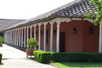 Santa Rita Vineyard