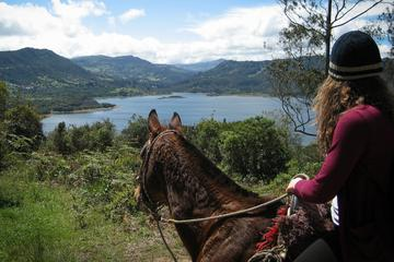 Half-Day of Horseback Riding along Mountain Trails in Bogota