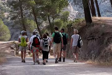 Day Hike in Marbella