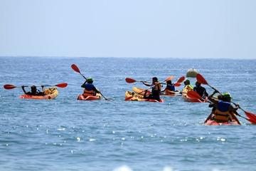 Sit on Top Kayak Tour in Taghazout...