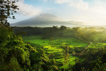 5 Days 4 Nights East Bali Delights (Standard)