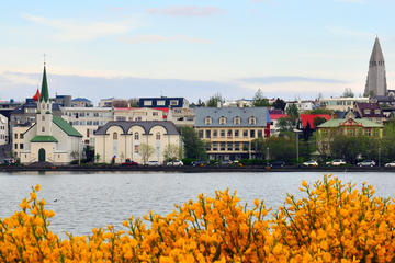 2-Hour Reykjavik City Walking Tour