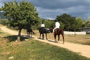 Paseo a caballo al atardecer y cena...