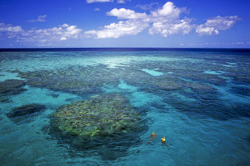 7 night Great Barrier Reef cruise