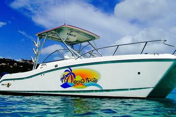 Full Day Private Boat Charter from St John