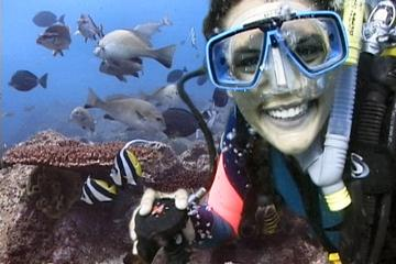 Byron Bay 3-Hour Certified Dive Tour