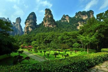 Full Day Zhangjiajie National Forest Park Small Group Tour
