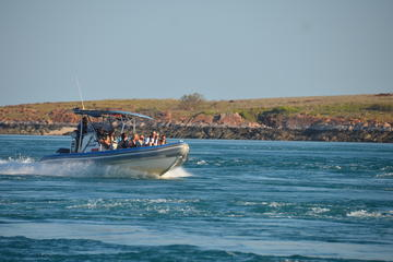 Giant Tides Air Safari From Broome Including Cygnet Bay Boat Tour and...